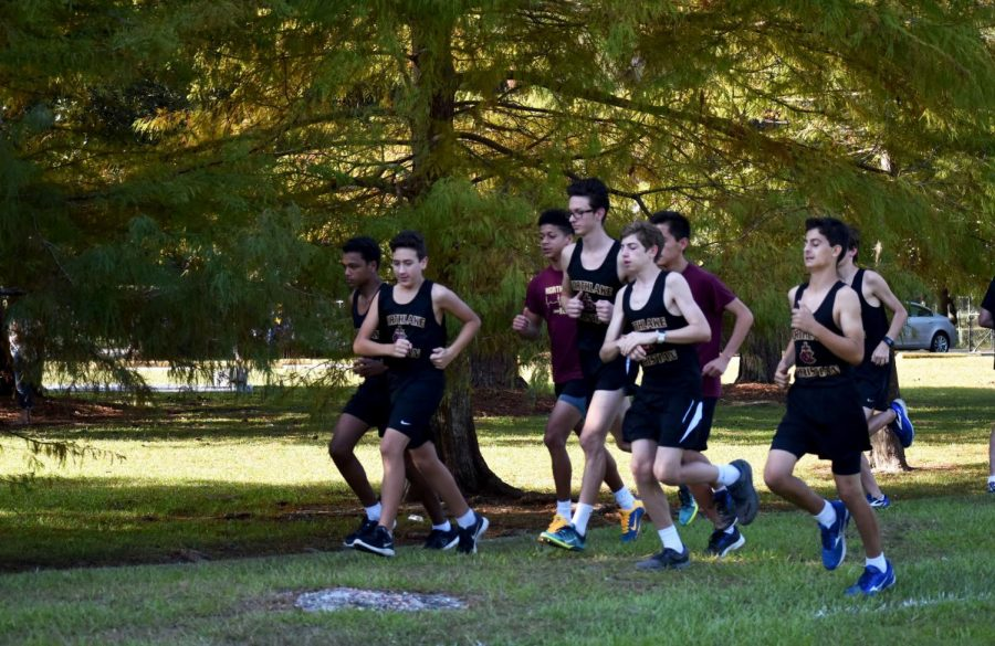 Cross Country athletes excel in season