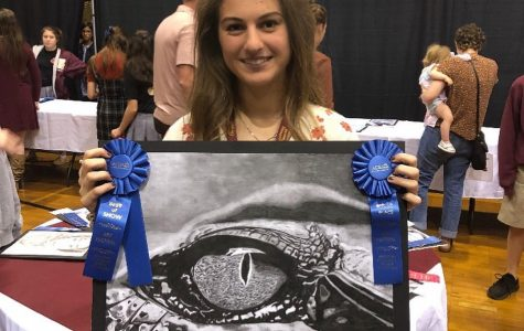 Talent showcased at ACSI Art Festival